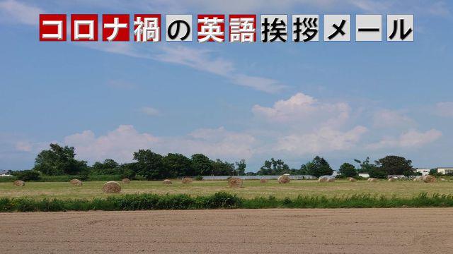 北海道の美しい景色をバックにした記事タイトル