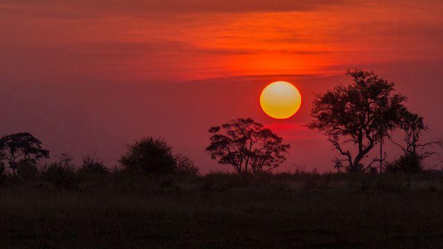 講師が住むボツワナのokavango deltaの夕焼け
