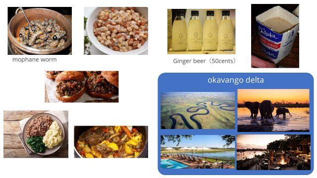 レッスン講師が写真を共有しながら教えてくれたボツワナの食べ物と観光地。幼虫は内陸に住むボツワナ人にとって貴重なたんぱく源とのこと。