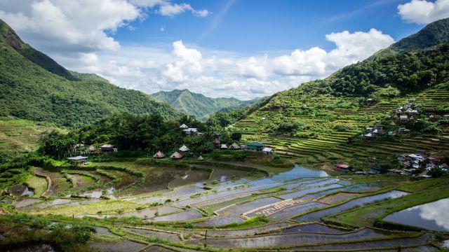 フィリピンの田園風景